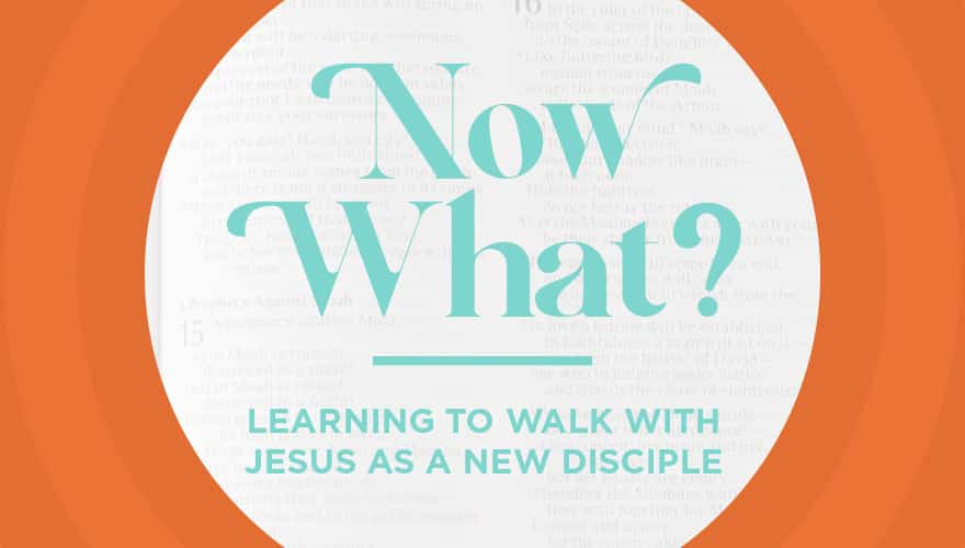 Resource: Now What? Discipleship Curriculum