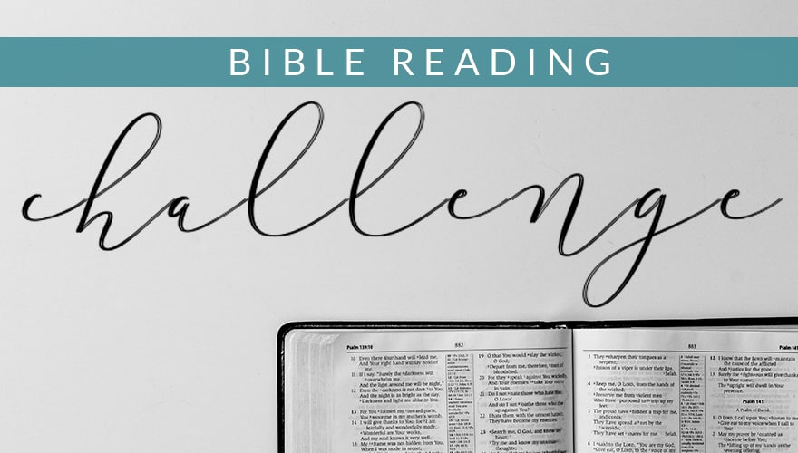 Resource: 2019 Embrace Bible Reading Plan